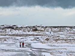 Foto landschap Texel